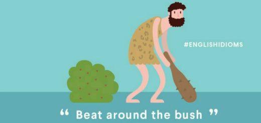 beat around the bush english expression